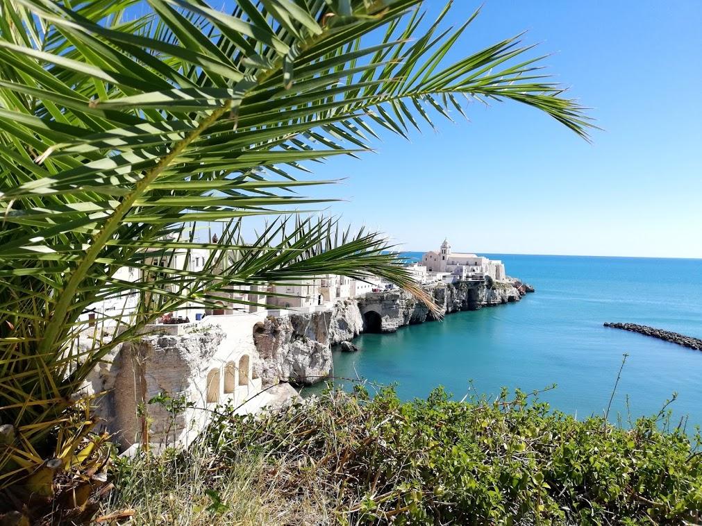 GARGANO (Puglia) tavolozza sul Mediterraneo                               25 luglio-1 agosto 2020